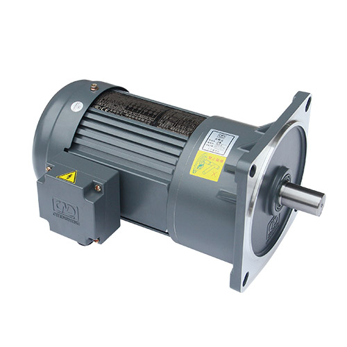 Vertical Gear Reduction Motor